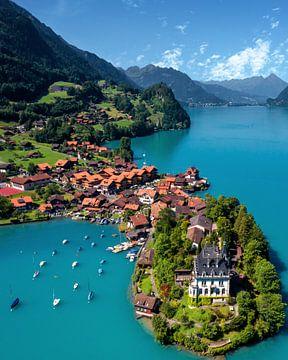 Die Halbinsel Iseltwald, Schweiz von Niels Tichelaar