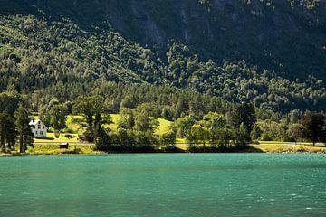 Fluss in Norwegen von Karijn Seldam