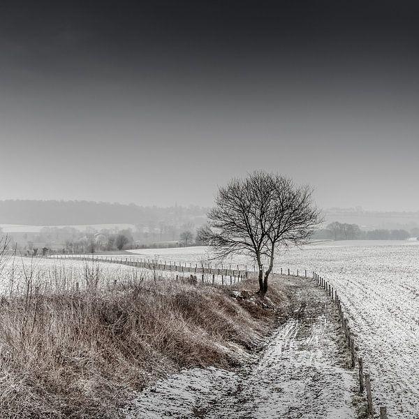 Border line van Ruud Peters