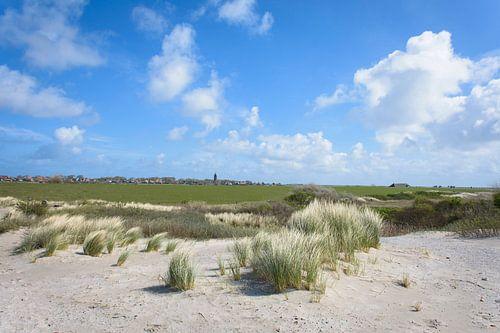 De duinen bij Hollum