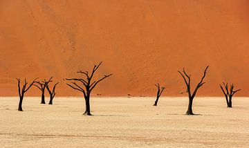 Sossusvlei Namibië (1) van Adelheid Smitt