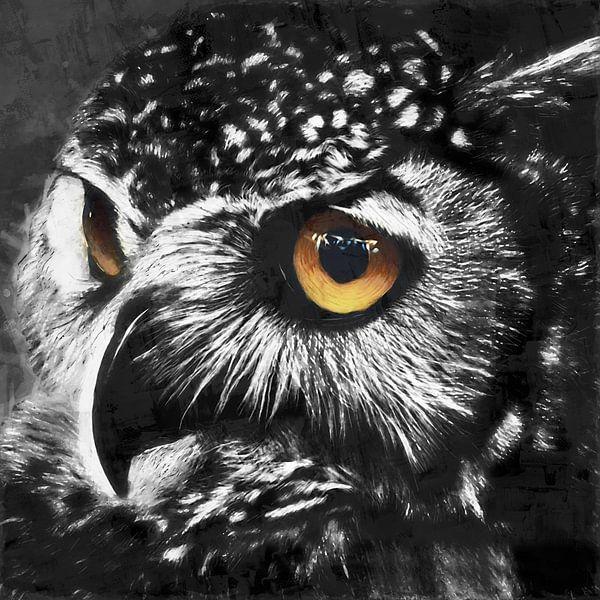Ölgemälde Porträt einer Eule mit farbigen Augen von Bert Hooijer