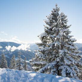 Winterlandschap  van Marjolijn Barten