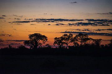 African Sunset van Robert Styppa