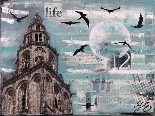 Groningen en vogels