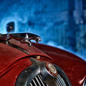 De Oude Jaguar van Reinier van de Pol