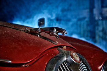 De Oude Jaguar van