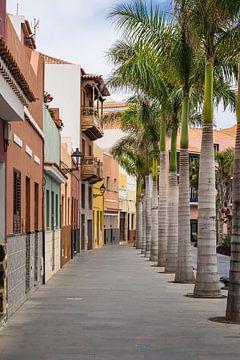 Street in  Puerto de la Cruz van Rico Ködder