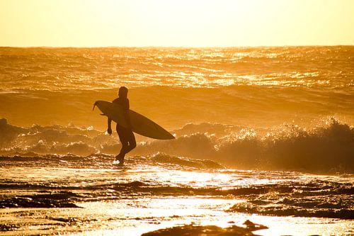 Surfer loopt branding in bij zonsondergang, Kalbarri, Australië