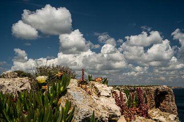 Prachtige wolkenluchten boven de Algarve van Susan van der Riet