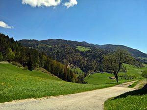 Weg in den Alpen van