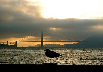 Golden Gate, San Francisco, California van Samantha Phung