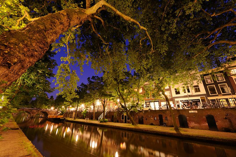 De Oudegracht in Utrecht tussen Smeebrug en Weesbrug van Donker Utrecht