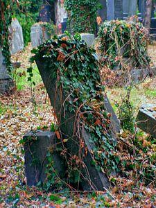Friedhof 03 von