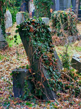 Friedhof 03 von Ilona Picha-Höberth