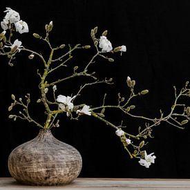 magnolia  in vaas van Klaartje Majoor