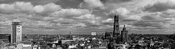 Skyline Utrecht van Niels Eric Fotografie