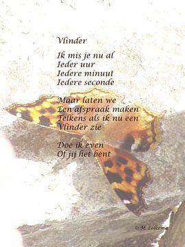 Vlinder van M Lolkema