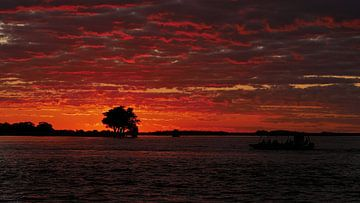 Fantastische zonsondergang over de Chobe rivier