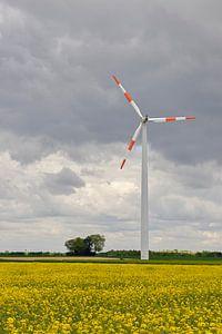 Wind turbine above a field of flowering yellow oilseed rape, renewable energy van wunderbare Erde