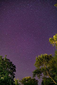 Sterne am Himmel von Robin van Steen