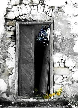 Cretan door no3d von Pia Schneider