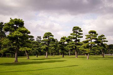 Tuinen van Keizerlijk Paleis in Tokio, Japan van Marcel Alsemgeest