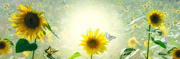 Sonnenblumen-Genuss von Leon Brouwer