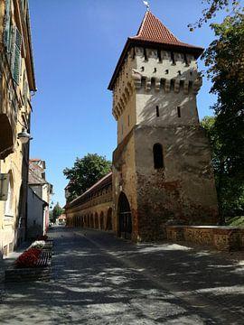 Sibiu van Anita Huijts