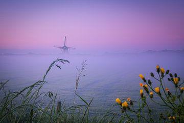 Misty Morning Lienden II van Sander Peters Fotografie