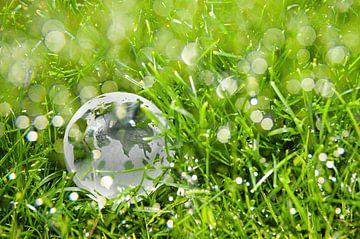 Globe van Bert Beekmans