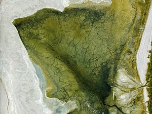 Colours of Water, Salton Sea, Californië, USA