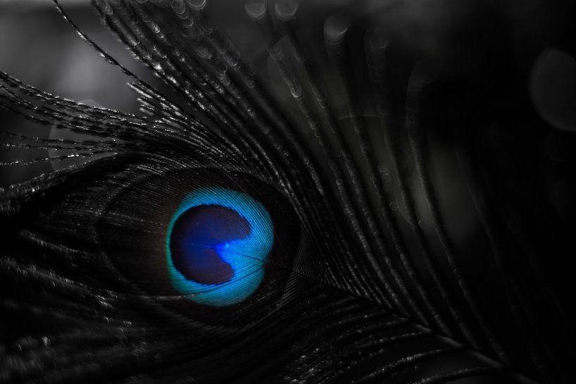 Eye, Strauss, von Udo Wanninger limitiete Auflage