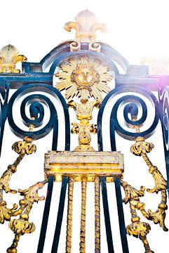Het hek van de Koning von Waldo Aikema