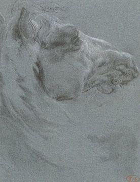 Portret van een paard van Eigenwijze Fotografie