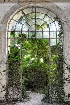 het raam naar de tuin van Joachim G. Pinkawa