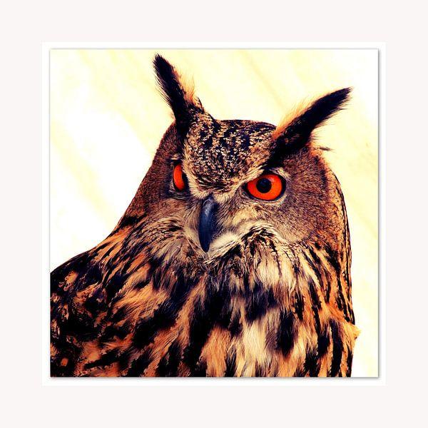 Eagle-owl van Pim Feijen
