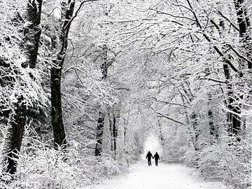 Winter im Wald von Caroline Lichthart