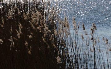 Ostseeabend von Anette Jäger