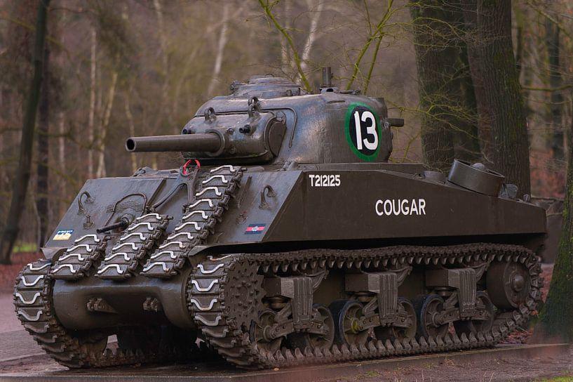 Sherman Tank WW2 van Brian Morgan