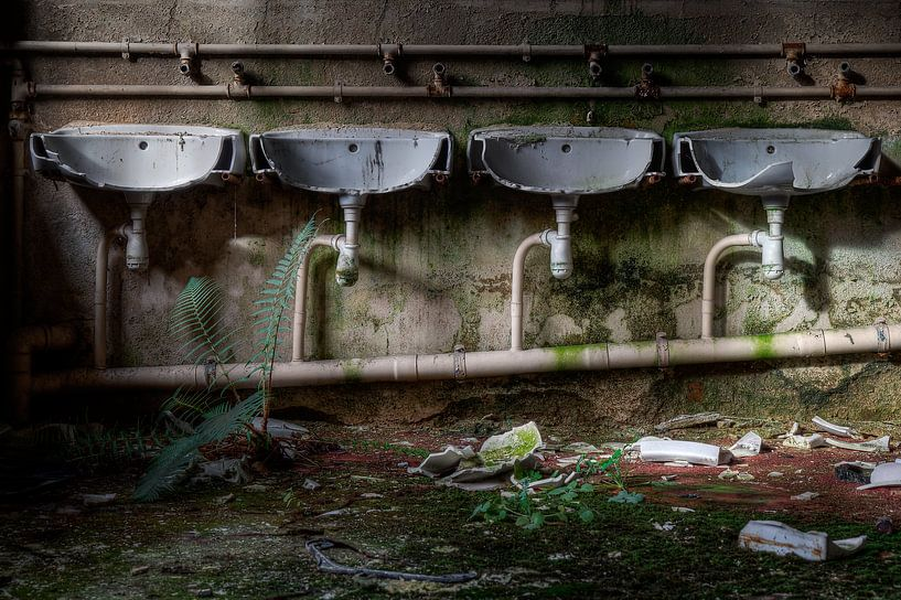 Wo ist der Klempner, wenn Sie ihn brauchen? von Steve Mestdagh