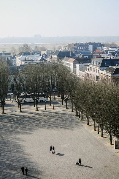Zicht op de Bossche parade vanaf het dak van de Sint-Jan. van mooidenbosch