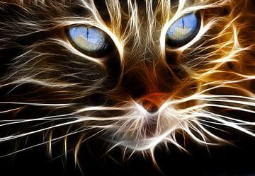 Die Katze in 3D-Lichtstreifen von Bert Hooijer