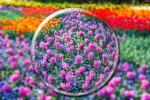 Kristallen bol met roze hyacinten en bloemenveld