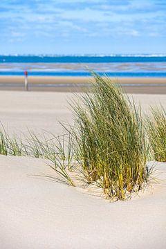 Pieds nus dans le sable sur Dieverdoatsie Fotografie