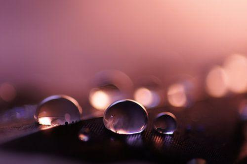Purple drops van Carla Mesken-Dijkhoff