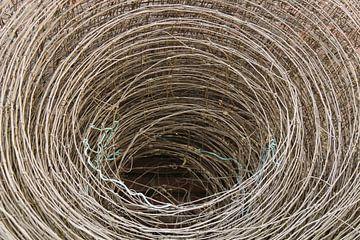 Gaas in cirkels van Rianne Loskamp