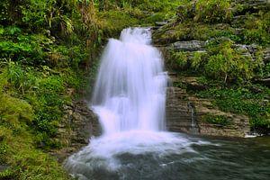 Waterval in de jungle van