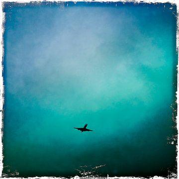 Plane von Nico Garstman