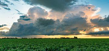 Zonsondergang met onweerswolk boven wijds landschap van Menno van der Haven